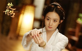 Zhao Liying, Princesa Agentes