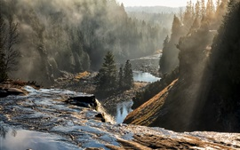 Canadá, Ontario, árboles, montañas, niebla, río, mañana