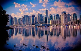 Preview wallpaper Canada, Vancouver, lake, water, ducks, skyscrapers, city