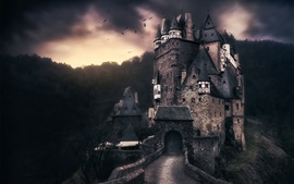 ELTZ castle, Germany, birds, clouds, dusk