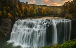 Preview wallpaper Forest, trees, river, waterfall, autumn, USA