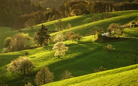 Germany, nature scenery, grass, trees, hills, spring