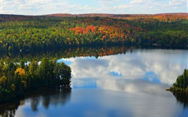 Preview wallpaper Lake, forest, trees, autumn