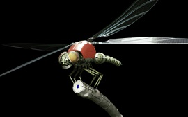 Preview wallpaper Metal robot dragonfly, black background, creative design
