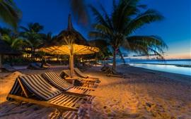 Noche, playa, mar, palmeras, tumbonas, luces