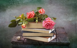 Preview wallpaper Pink rose, books, still life