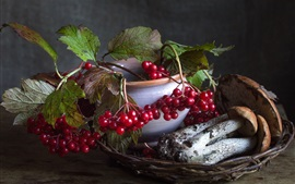 Preview wallpaper Still life, red berries, mushrooms, boletus