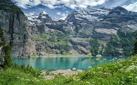 Preview wallpaper Switzerland, Bernese Alps, lake, mountains, wildflowers