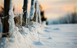 Preview wallpaper Thick snow, winter, fence