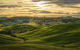 Preview wallpaper Tuscany, Italy, hills, green, trees, clouds, sunset