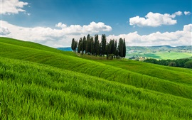 Preview wallpaper Tuscany, Italy, hills, trees, grass, fields, clouds