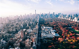 Preview wallpaper USA, New York, park, trees, city, autumn