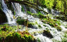 Вода, ручей, водопад, мох, камни, Китай, Цзючжайгоу