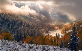 Winter, snow, mountains, trees, forest, clouds