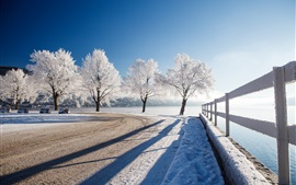 Winter, snow, trees, river, park