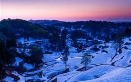 Winter, snow, trees, valley, dusk