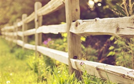 Wood fence, grass, flowers, blurry