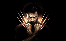 Preview wallpaper X-Men, Hugh Jackman, Wolverine