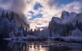 Yosemite National Park, California, USA, trees, lake, mountains, fog