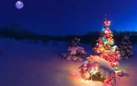 Beautiful Christmas tree, lights, snow, night