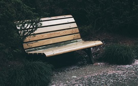 Preview wallpaper Bench, tree, park