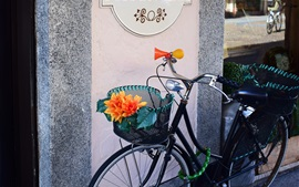Preview wallpaper Bicycle, flower, store
