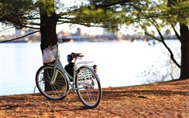 Preview wallpaper Bike, trees, river