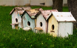 Preview wallpaper Birdhouses, grass