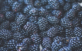 Preview wallpaper Blackberries, fruit close-up