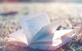 Livro, grama, luz do sol, brilho