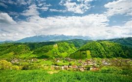 明るい夏、丘、木、村