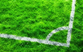 Preview wallpaper Football field, grass