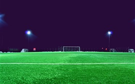 Football field, lawn, lights