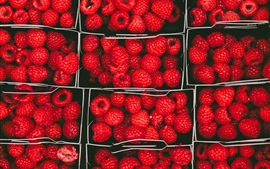 Preview wallpaper Fresh red raspberries, fruit, boxes