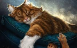 Gatinho peludo dormindo, travesseiro, mouse, foto de arte