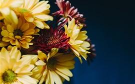Гербера, желтые и красные цветы, букет