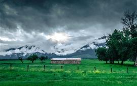 Трава, поле, хижина, горы, деревья, облака, туман