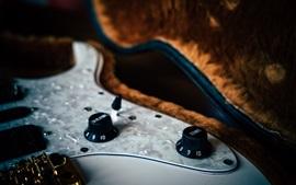 Guitarra, baixo, sintonizador
