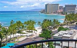 Honolulu, Havaí, EUA, palmeiras, edifícios, mar