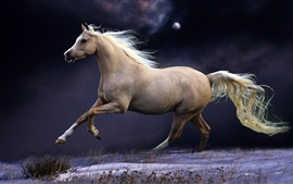 Preview wallpaper Horse running, jump, speed