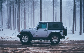 Preview wallpaper Jeep JK wrangler car side view, snow, winter