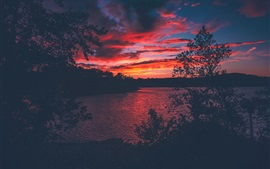 Preview wallpaper Lake Lanier, USA, trees, sunset