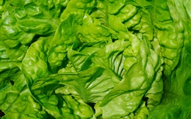 Preview wallpaper Lettuce leaves close-up, vegetable