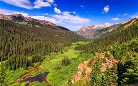 Montañas, rocas, árboles, arroyo, valle, Colorado, Estados Unidos