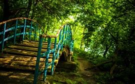 壁紙のプレビュー 公園、森林、橋、ぼやけた