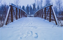 Preview wallpaper Snow, bridge, trees, winter