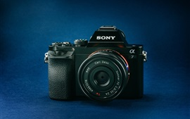 Sony A7 digital camera