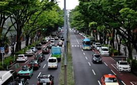 Tokyo, Japon, ville, rue, route, voitures, arbres