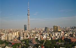 Aperçu fond d'écran Tokyo, Japon, tour, crépuscule, ville