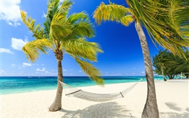 Preview wallpaper Tropical, paradise, sea, beach, palm trees, hammock, summer